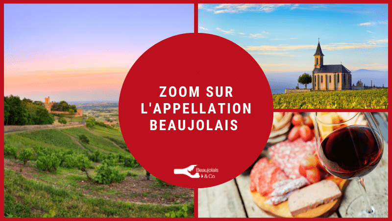 appellation Beaujolais