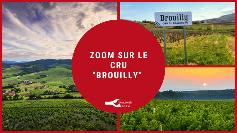 cru brouilly