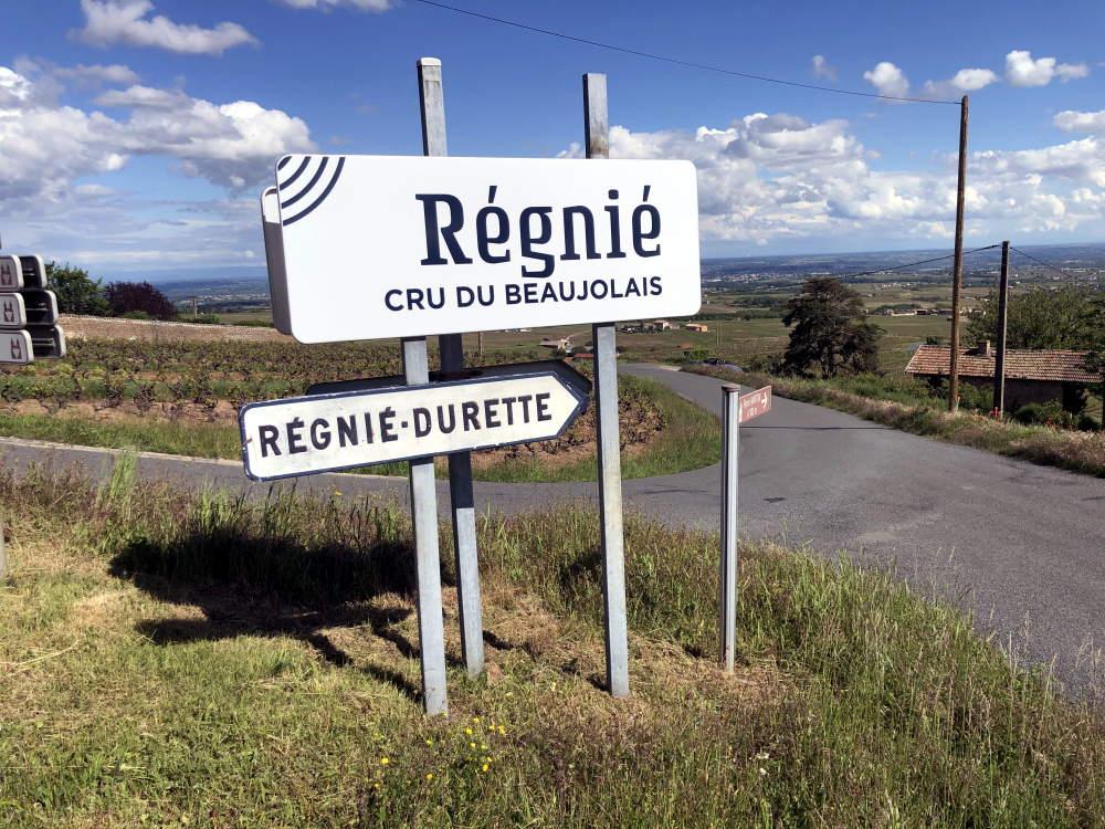 panneau cru Régnié