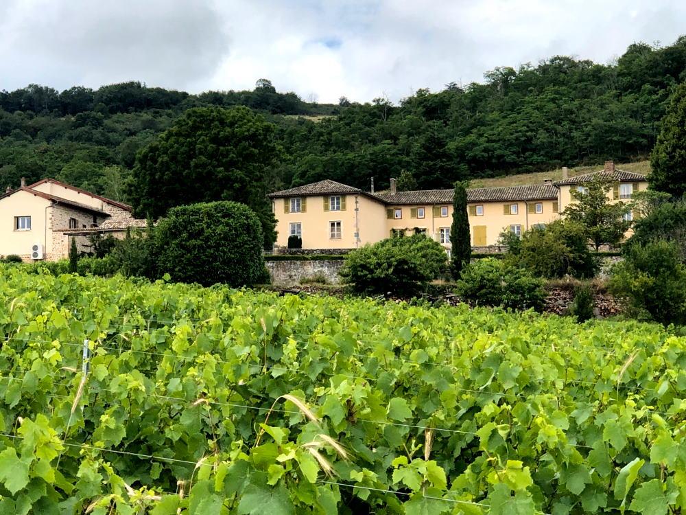 Château du Basty depuis les vignes